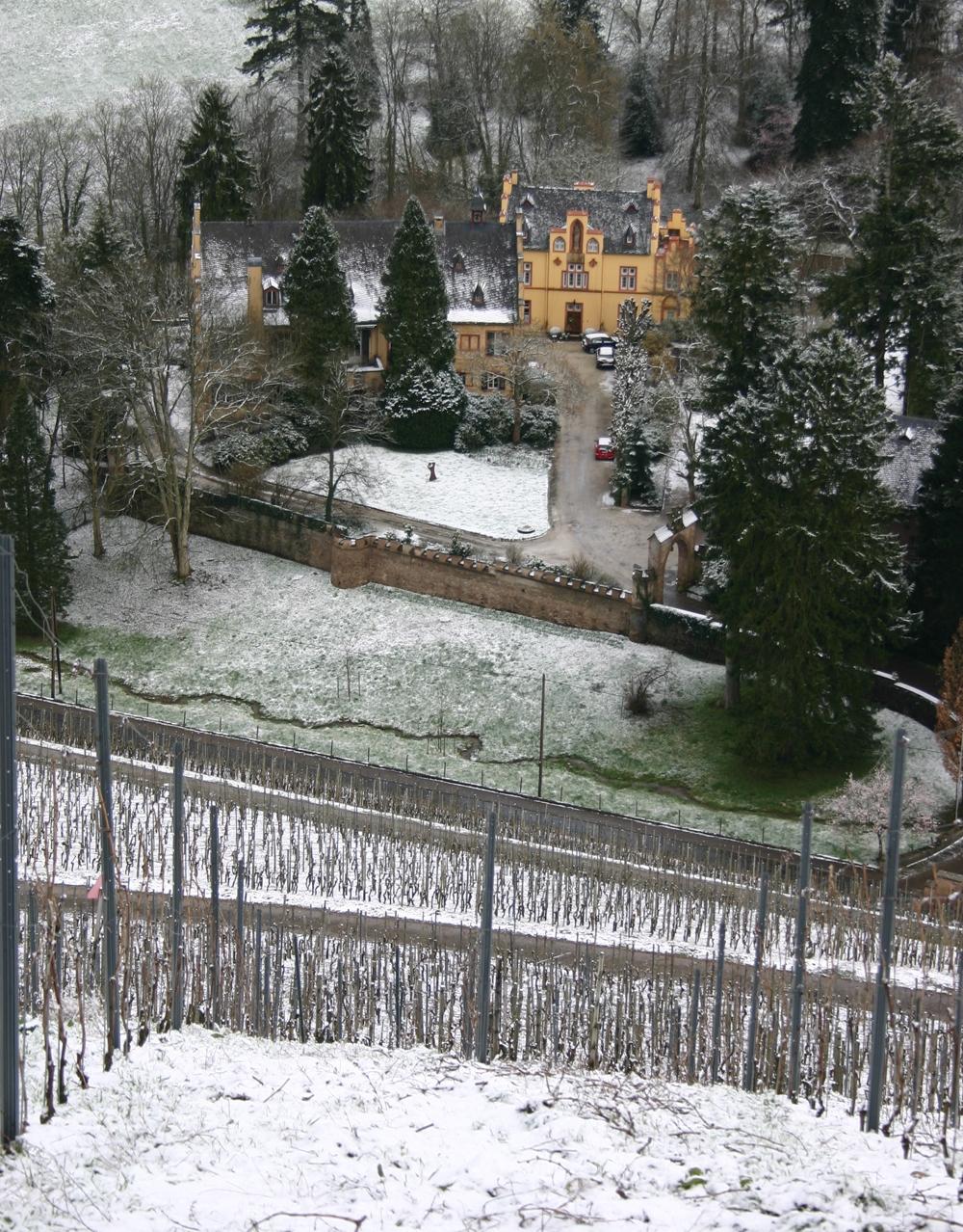 2012 Maximin Grünhäuser Herrenberg Riesling Eiswein 0,375 Fl